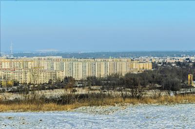 Winterstimmung am Rande der Großstadt