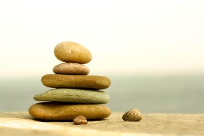 Steine und Schnecken