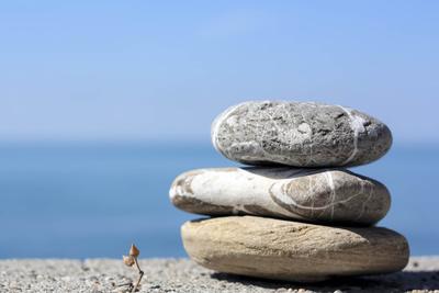 Winziges, neues Leben  und harte Steine