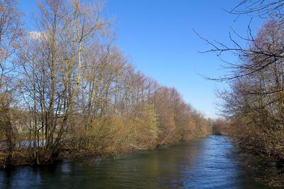 Vorfrühling am Fluss