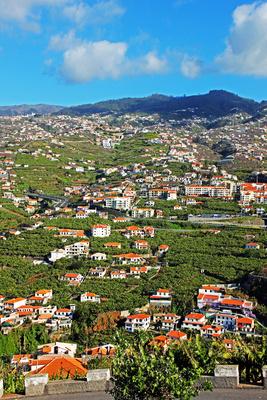 Berge Funchal