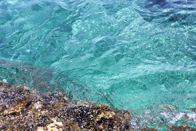 Klares Meerwasser