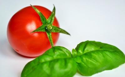 Tomate & Basilikum