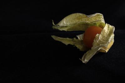 lecker, fruchtig