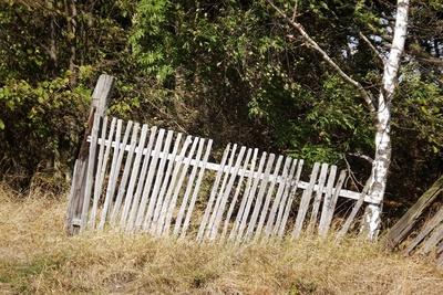 Der alte Zaun