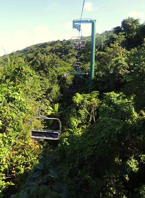 Rainforest SkyExplorer Sessellift