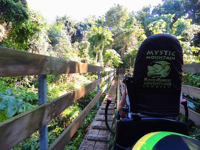 Bobrennbahn durch den Regenwald Jamaikas