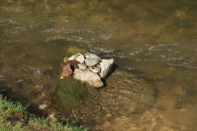 Kinder retten Steine vor dem Strom ...