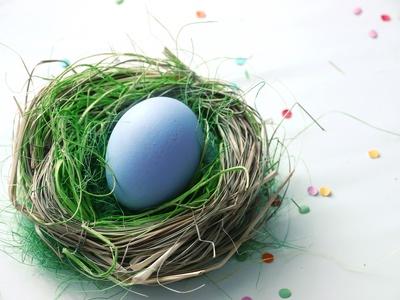 kleines Nest . . .
