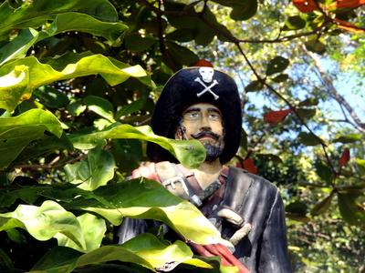 Versteckter Pirat