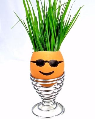 Cool Eggman