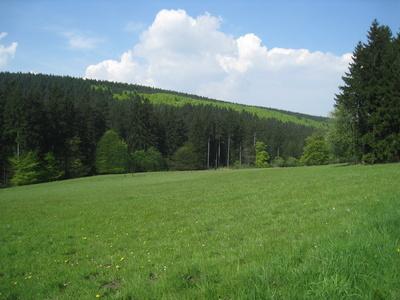 Frühlingswiese, Frühlingswald, Frühlingshimmel