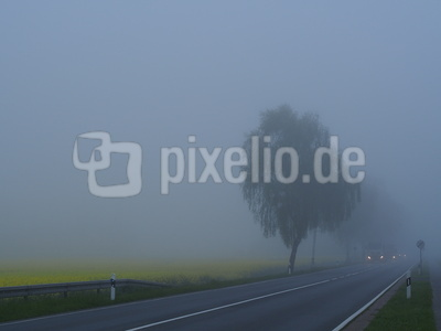 im nebel unterwegs 5