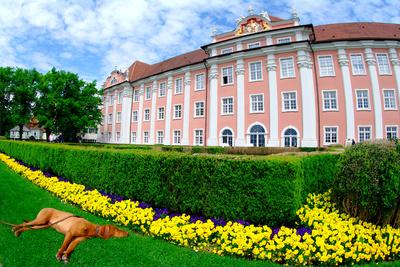 Schlossanlage Meersburg