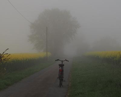 im nebel unterwegs 9