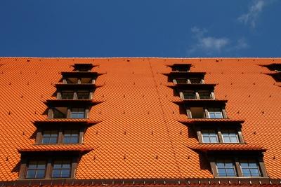 Dach.Perspektiven 01