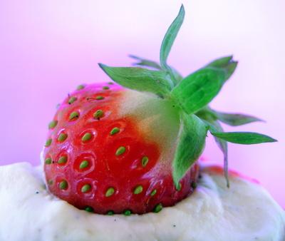 Erdbeere . . .