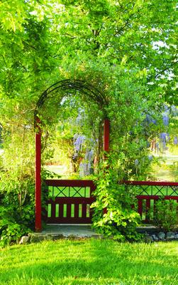 Tor zum Garten Eden