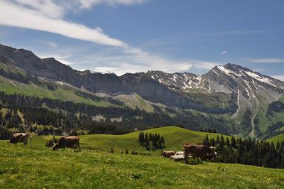 Nidwaldner Berge: Schwalmis-Kette