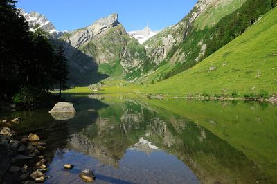 Alpstein-Berge im Seepiegel