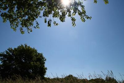 Junisonne über dem Leutstettener Moos