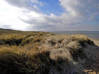 Dünen und Wind - Nordsee
