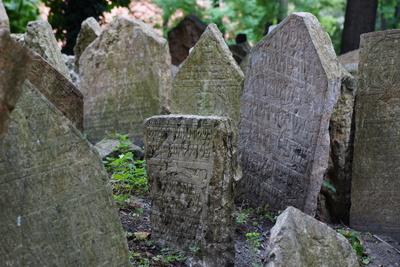Jüdischer Friedhof 2