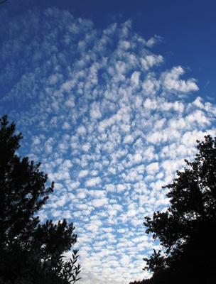 Schäfchenwolken am frühen Morgen