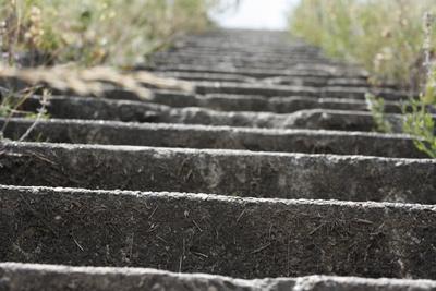 Treppe am Rheindamm