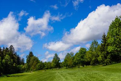 Golfen im Schwarzwald - GC Königsfeld