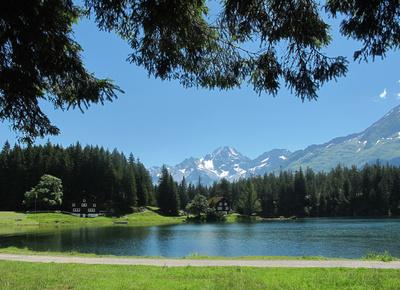 Alpsee-Rundweg