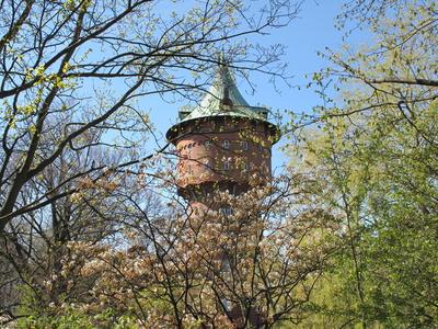 Sommer am alten Wasserturm (6)