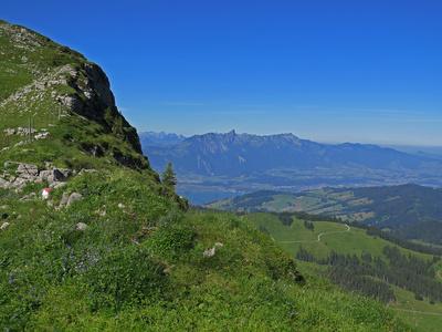 Blick zum Thunersee und Stockhorn