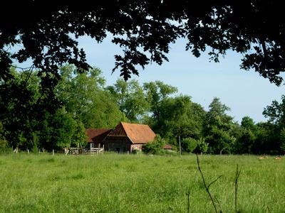 Der einsame Bauernhof