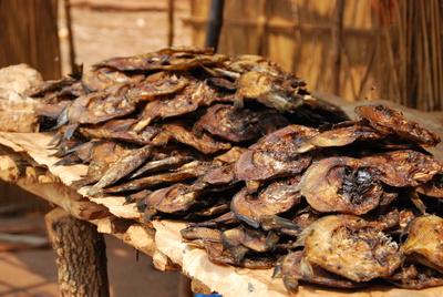 Getrocknete Plattfische auf dem Markt, Malawi, Afrika
