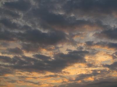 Am Abend beim Sonnenuntergang