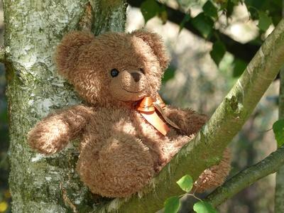 Wer sitzt denn da im Baum