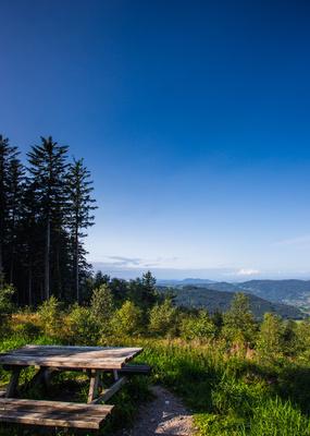 Wandern im Schwarzwald_hoch