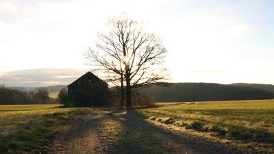 alte Scheune in Morgensonne