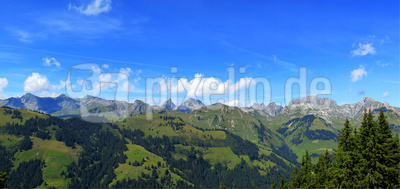 Panoramablick in die Fribourger Alpen