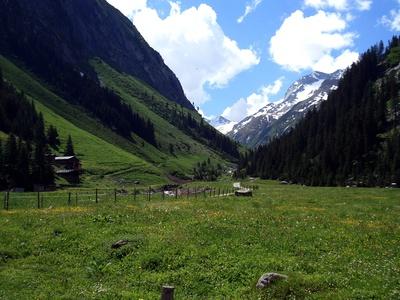 Blick über Almwiesen und Berghänge