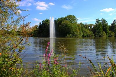 Wasserspiele am Teich