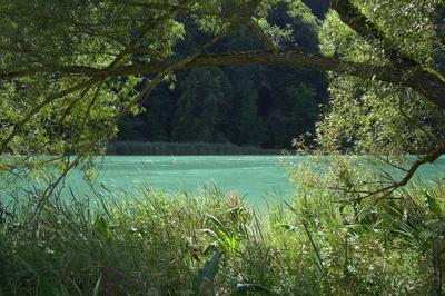 Am Wohlensee