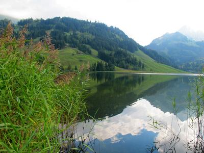 Spiegelbild im Schwarzsee