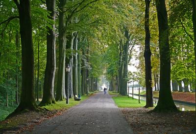 Herbstanfang im Schlosspark (Querformat)
