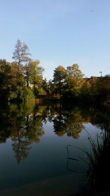 Herbst am Egelsee