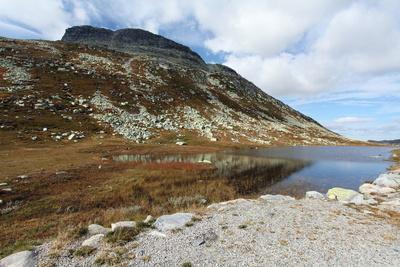 Südnorwegisches Fjell