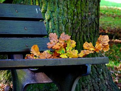 Herbst .
