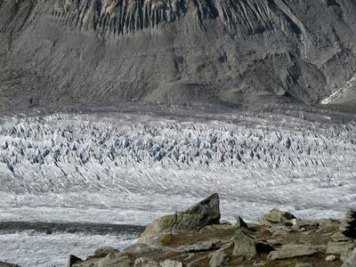 Das Eis lebt und bewegt