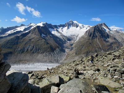 Spuren des Gletschers